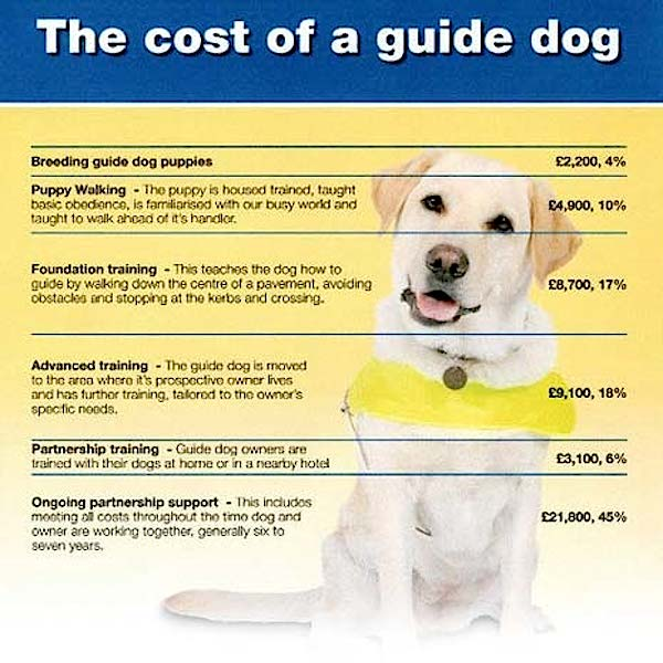 cost_of_guide_dog