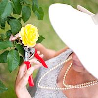 rosie-gardening