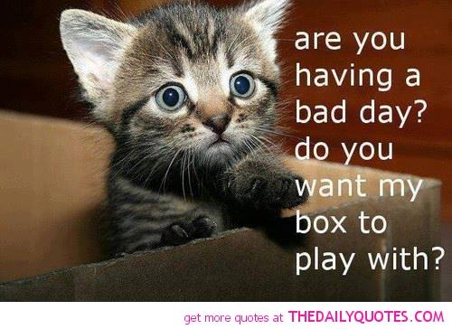 Are You Having A Bad Day Meme Chris The Story Reading Ape S Blog