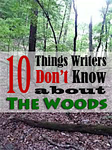 things-writers-dont-know-woods