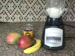 Preparing Mango Shake in the Revived Blender