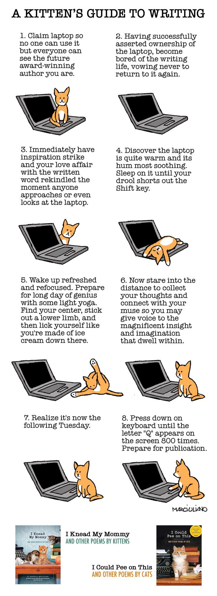 Kitten Writer Guide