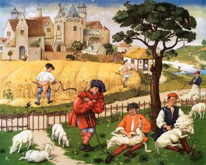 Sheep shearing and reaping 15th C