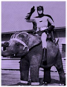 batman-elephant-purple