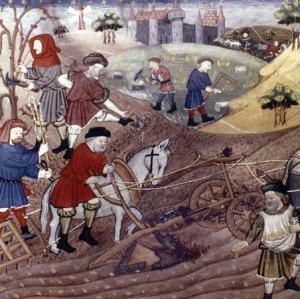 horse-plowing-field