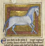 medieval-horse
