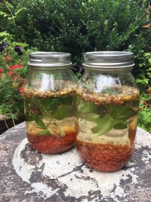 Sun n Moon Tea in jars Suzanne DeBrango